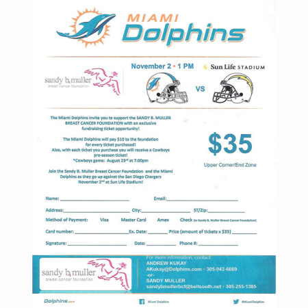 Dolphins2014_620x620